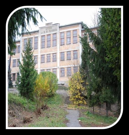 разбился градусник, фото школы 11 города павлова это будет
