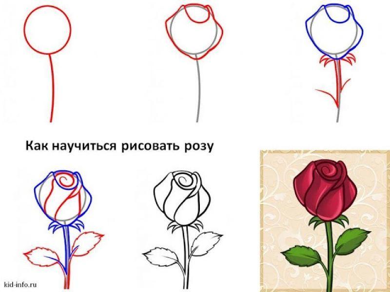 Научится рисовать карандашом красиво для начинающих